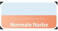 BAPM_mulitlang-normale-narbe_v1_BJ